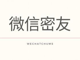 微信密友 - WechatChums,基于微信巫师,更新至1.2.2,支持微信7.0.6